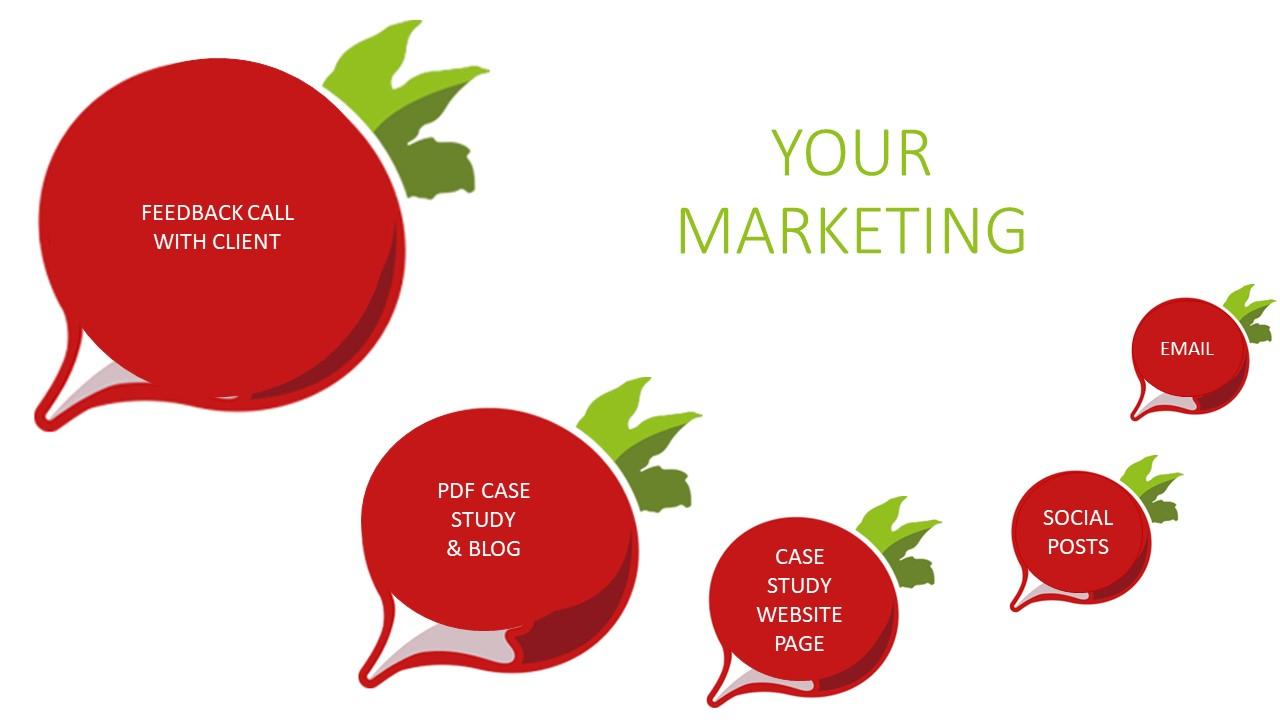 Radish marketing